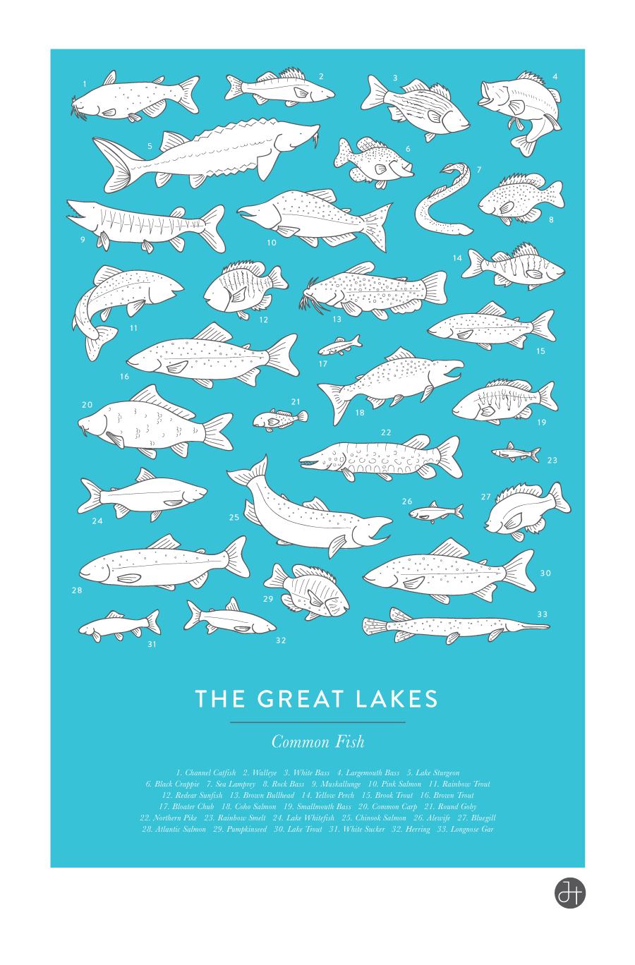 Fish poster 4